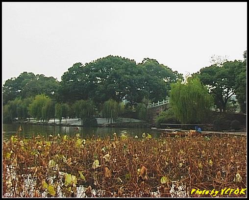 杭州 西湖 (其他景點) - 229 (從北山路 望向西湖十景之 蘇堤 誇虹橋)