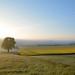 Blick vom Wolfsberg by Sandsteiner