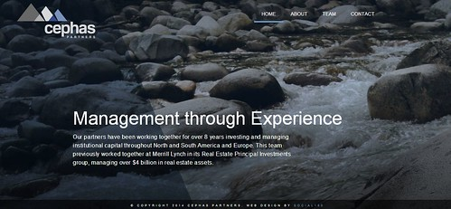 Cephas Partners Website Capture