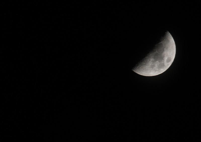 luna moona