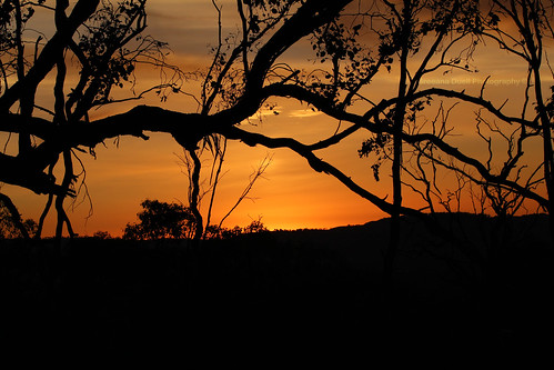 trees sunset red orange silhouette yellow canon colours australia east albury 70mm 650d