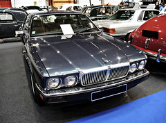 Jaguar_DSCN1615