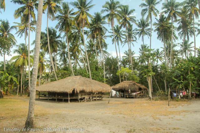 Indonesia - Sumba - Tarimbang - 15 - Local house