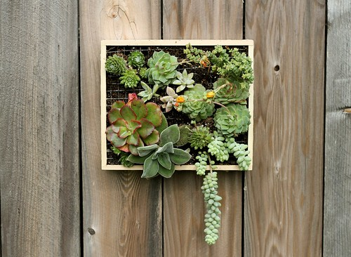 One solar daytime she may live needle felting as well as the side past times side planting a hanging garden inwards pinecones The Interview Every Crafter Who Wants to Stay Organized, Be #1 Mom as well as Make Money While They Sleep Needs to Read