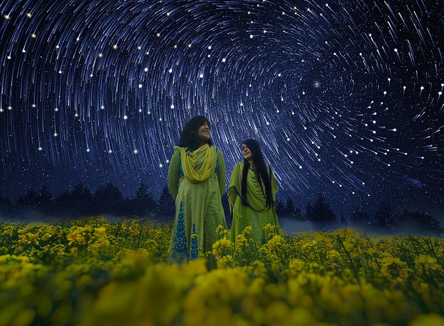 Starry Night Watchers