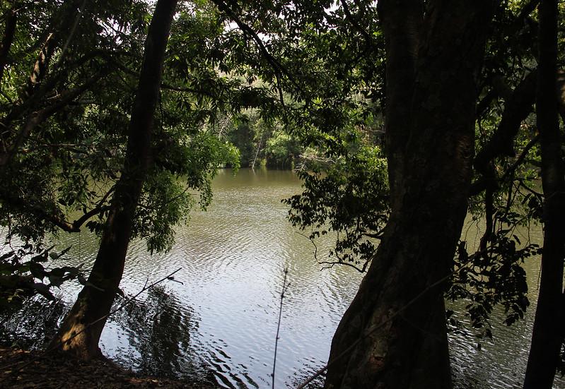Kabini flowing through Kuruva Dweep