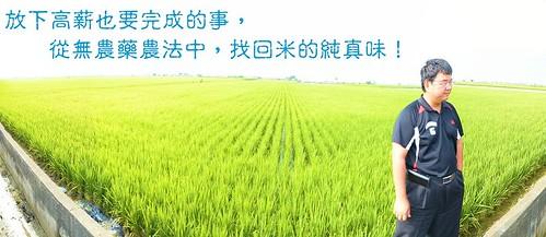 放下高薪也要完成的事,從無農藥農法中,找回米的純真味!