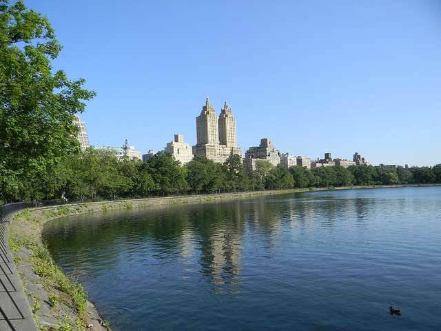 Central Park 6 (NYC)