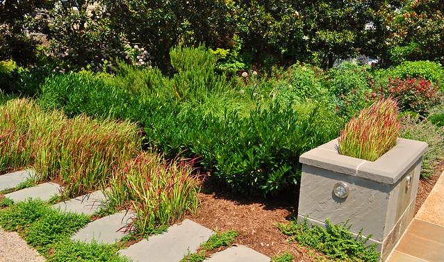 Goodman Garden (8)