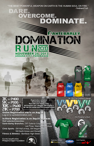 domination poster_low