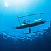 Fisherman paddling Alor by Luko GR
