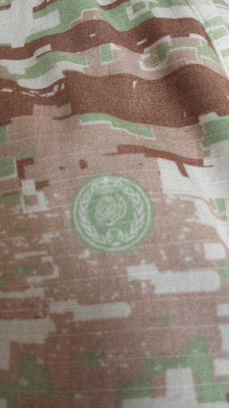 Saudi Royal Guard Regiment Digital Camo Pants 10237290033_046099d1ce_b