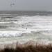 Wild West Wight Water by s0ulsurfing