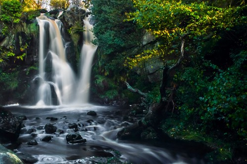 autumn motion tree water abbey leaves waterfall rocks stream long exposure yorkshire blurred valley bolton gill desolation posforth