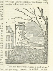 """British Library digitised image from page 267 of """"History of Vermont, natural, civil, and statistical"""""""