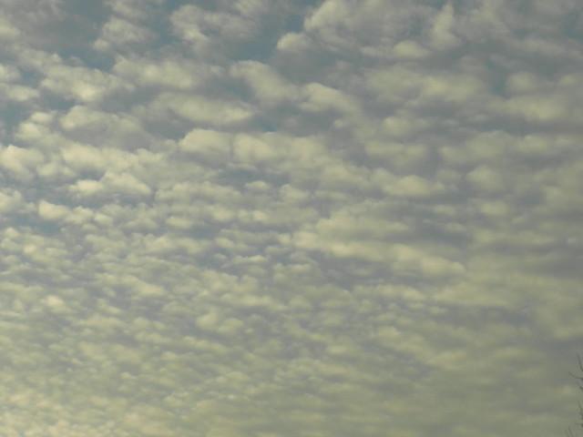 skywatchDSCN6357