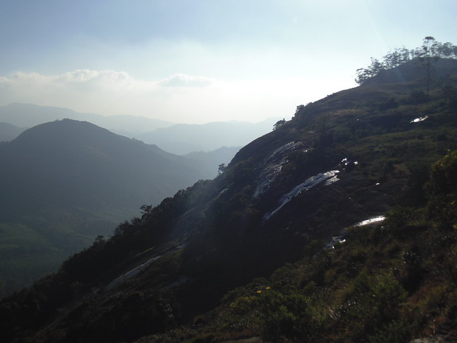 small streams in Eravikulam National Park, Munnar