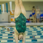 2014-02-11 -- Swimming & Diving vs. Millikin