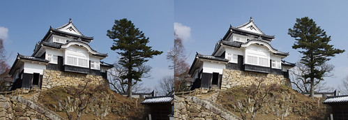 Bitchu Matsuyama Castle, stereo parallel view