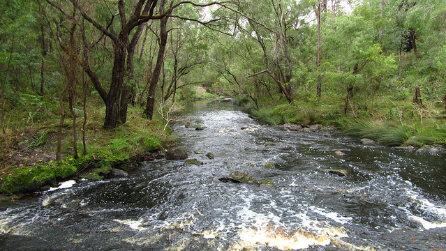 Day 36: Gardner River