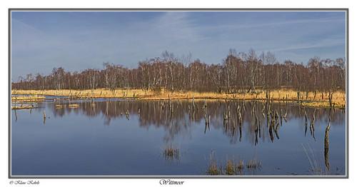 hamburg natur moore landschaft flickrstruereflection1 flickrsfinestimages1 infinitexposure witmoor
