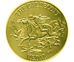 metal, bronze, gold, coin,