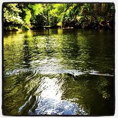 canoe wake is my favorite kinda...
