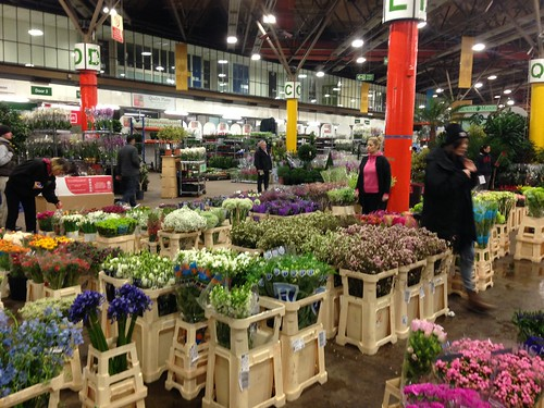 buying flowers at new covent garden flower market at nine elms