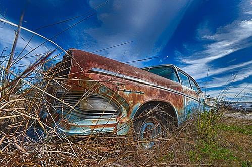 Old Abandoned Edsels