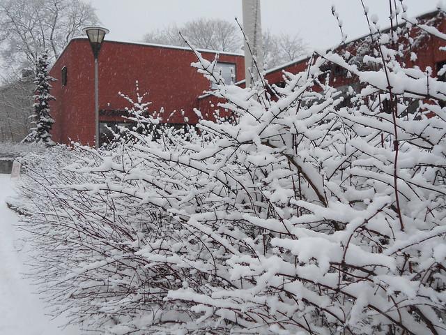 Luminen maisema kirjastolla Hämeenlinnassa 2.2.2015