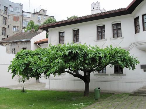 Belgrad, prinsessa Ljubican kotipalatsi