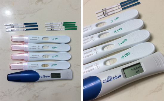 pregnancytests