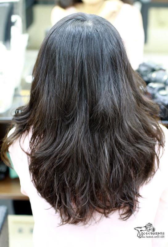 波拉髮型 (36)