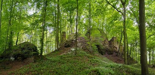 Haimburg Castle Ruin  II