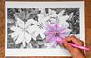 ColorKey ohne Photoshop!! by CappyFoto