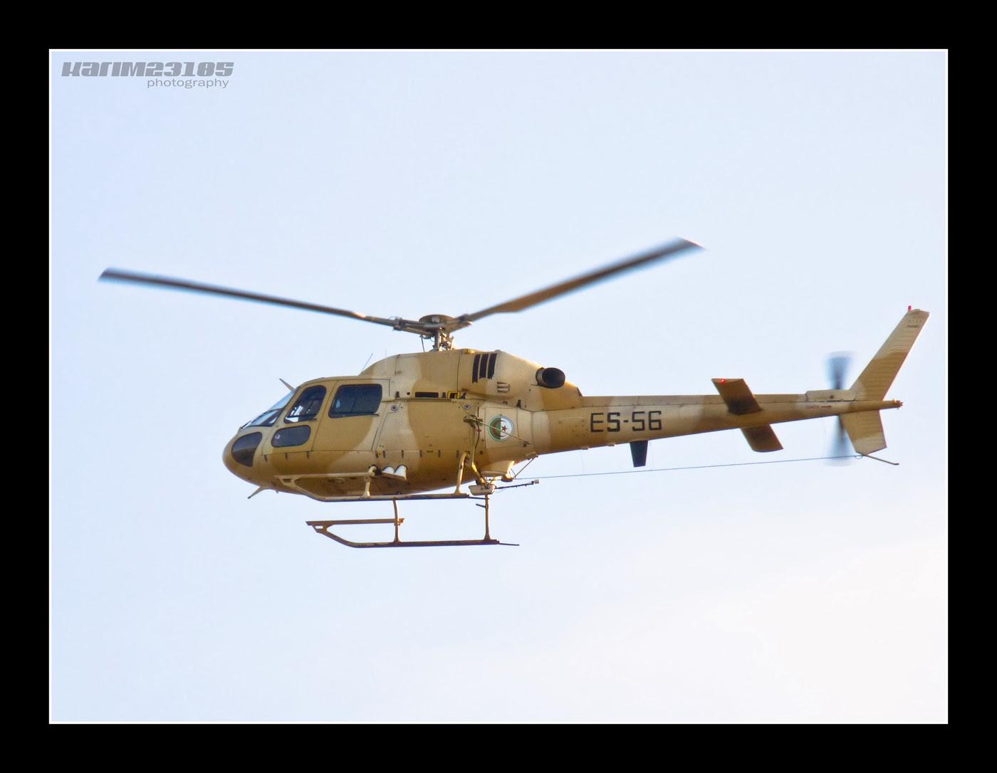 صور مروحيات القوات الجوية الجزائرية Ecureuil/Fennec ] AS-355N2 / AS-555N ] - صفحة 6 27476892395_7da1df6264_o