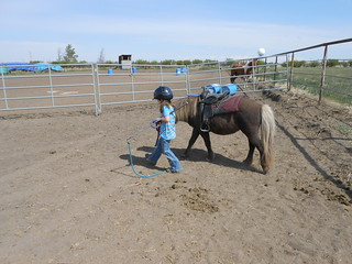 Horse Lessons 5-17-13 (2)