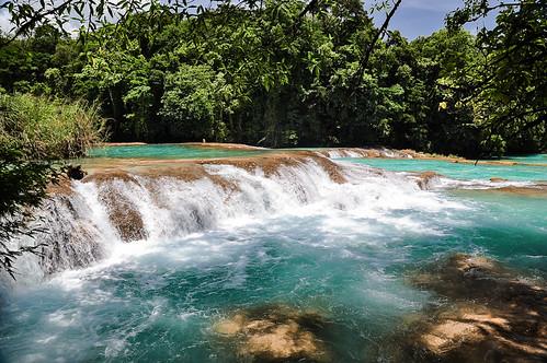 Cascadas de Agua Azul (53)