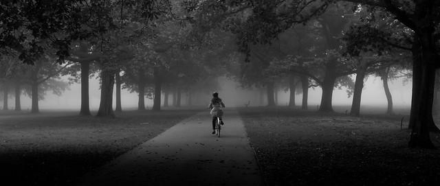 ealing fog