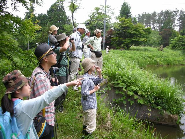 池まわりで観察開始. 遠くに見える鳥はなんだろう??