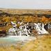 Un automne islandais ~ Hraunfossar, les élégantes by Marie l'Amuse
