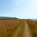 Small photo of Chale Bay
