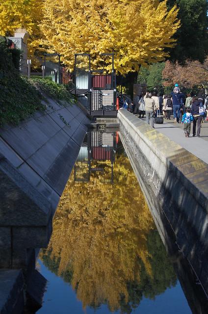 東京路地裏散歩 秋の上野公園 2013年11月24日