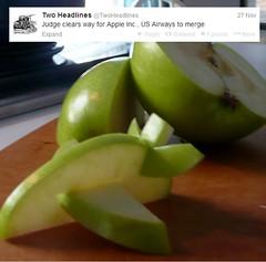 banana(0.0), produce(0.0), fruit(1.0), food(1.0), granny smith(1.0), apple(1.0),