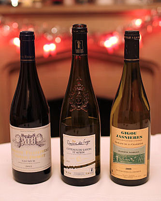 Loire valley wines IMG_0277 R