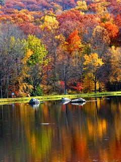 Vivid Autumn Reflection