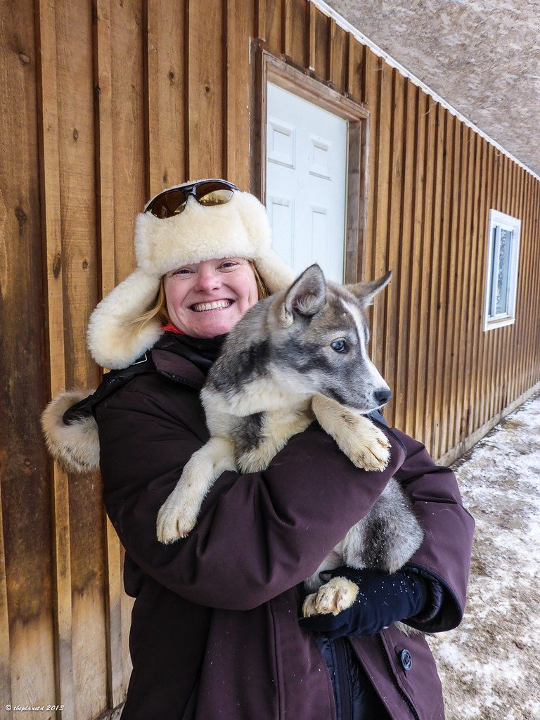 Husky Puppy and Deb
