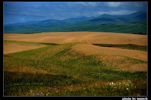 甘肅藏區黃河上游,退牧後裸露的草場,造成揚塵來源。