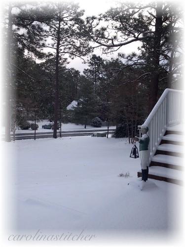 Jan 2014 snow