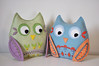 Spring Owls by HibouDesigns